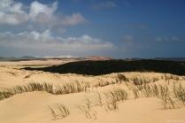 und dann, Wüste